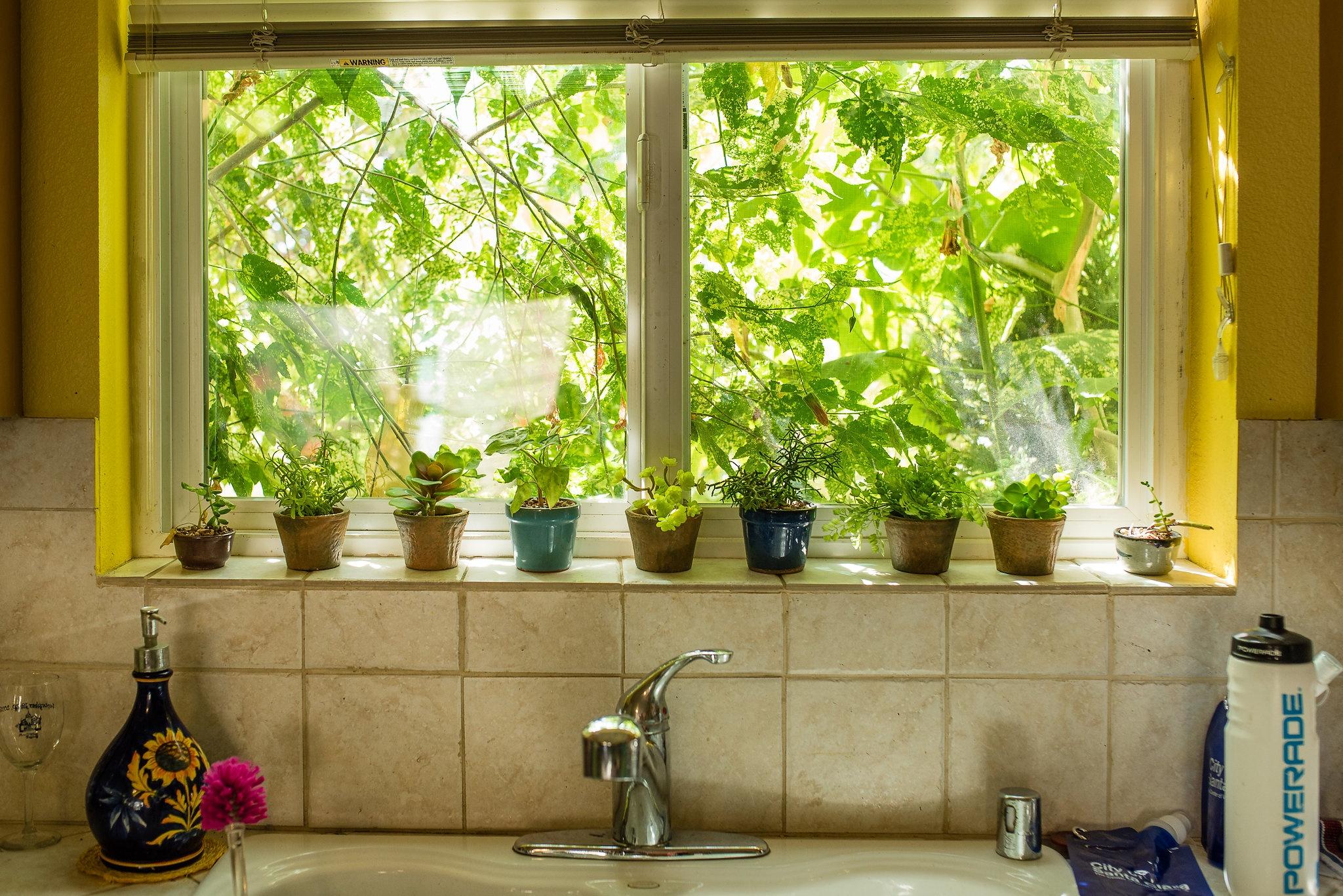 Homeownership brings health